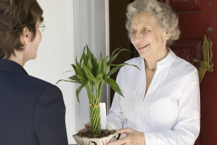 Senior woman receiving gift of bamboo plant at front door