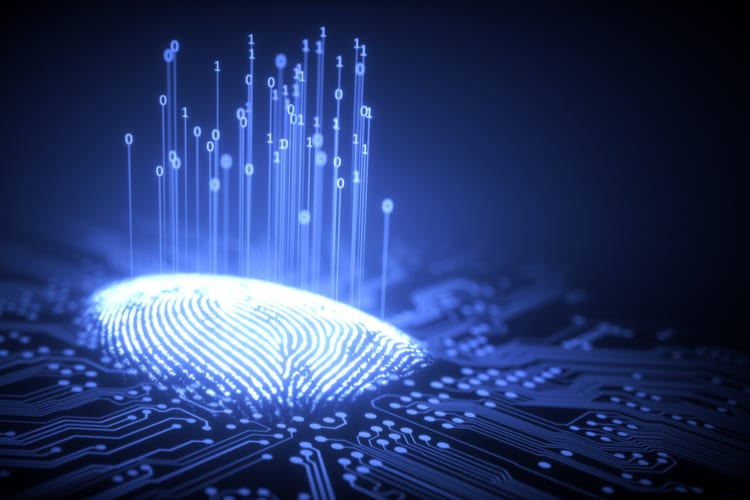 Fingerprint integrated in a printed circuit, releasing binary codes